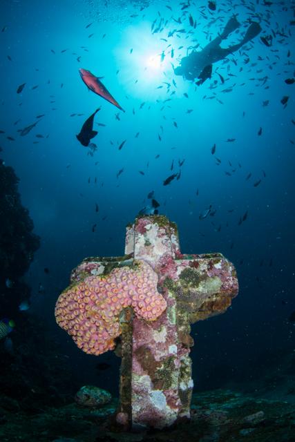 海の十字架