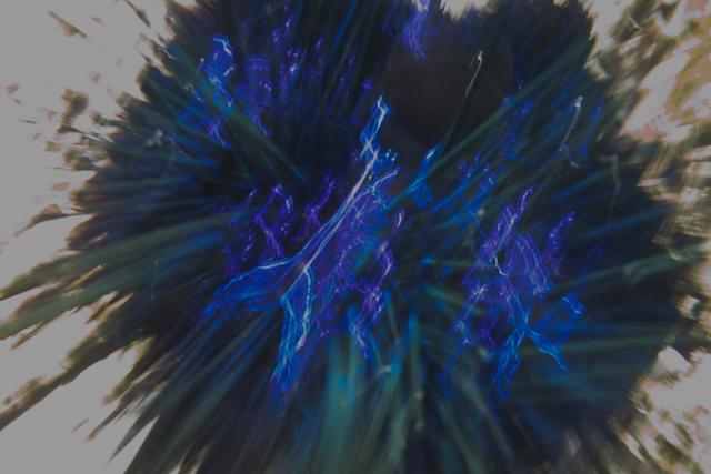 ガンガゼの青