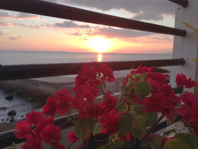 夕日とブーゲンビリア