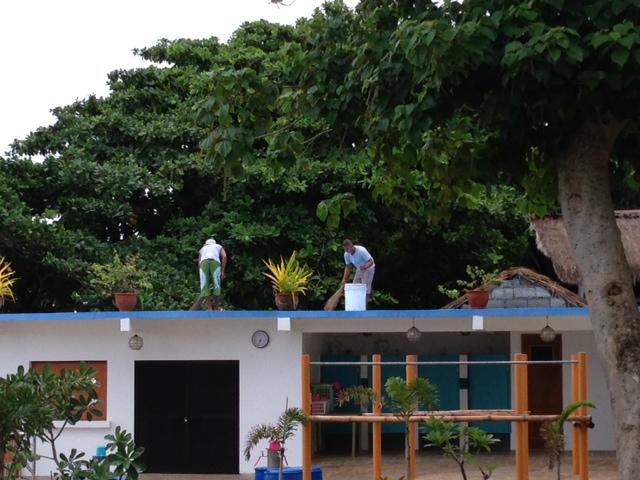 屋根の上掃除