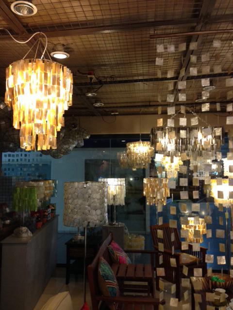 アニラオの電気の傘注文