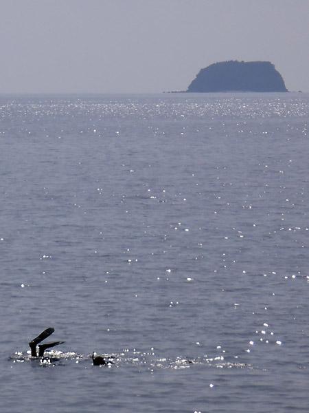 ソンブレロ島とスキンダイブ