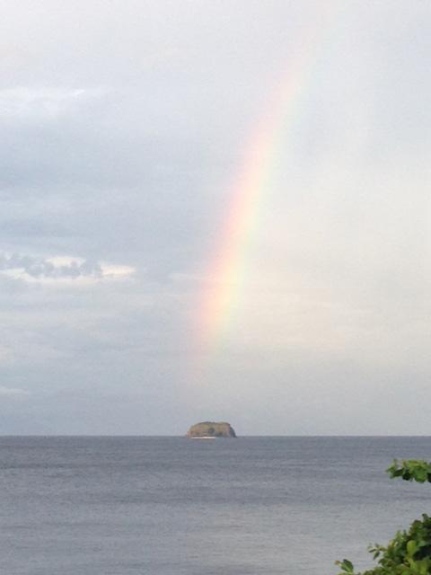 ソンブレロと虹