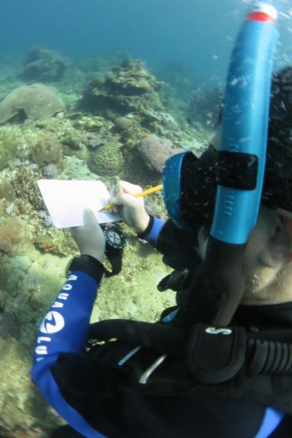ダイブマスター水中地図作成
