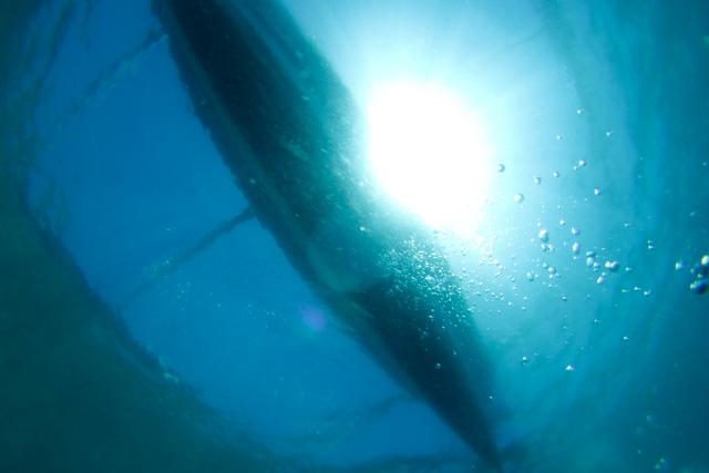 アニラオの海とバンカーボート