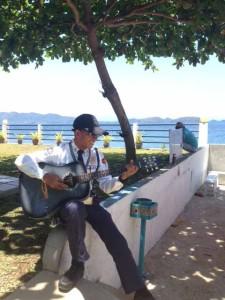 ガードマンとギター