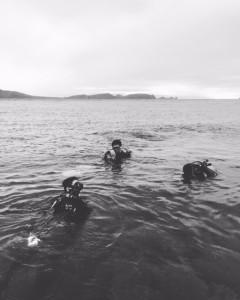 マニラナイトダイビング
