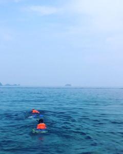 170430swim