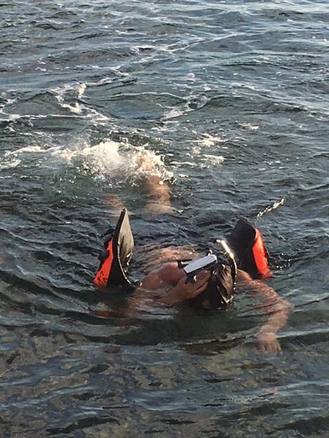 アニラオの海にドローン堕つ