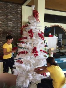 アニラオのクリスマスツリー