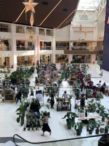 201120greenmarket