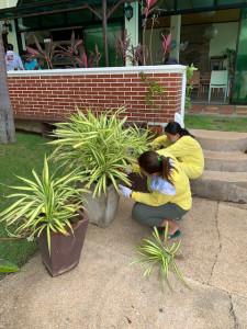 211015plants
